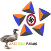 Eggs - Aabi Emu Farm