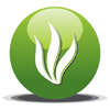Natraj Agro International