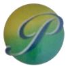 PSN Enterprises