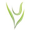 UV Exports Pvt. Ltd.