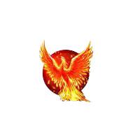 Phoenix Quality Exports