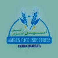 Ameen Rice Industries