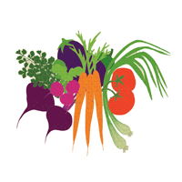 Aanam Agro Exporting Company