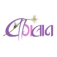 Baghban- The Online Florist