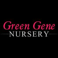 Green Gene Nursery