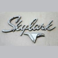 Skylark Enterprises