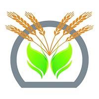 Banseedhar Krushi Evam Pashupalan Producer Co. Ltd