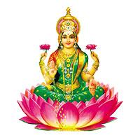 Shri Mahalakshmi Baby Care
