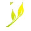 M/s Kansal & Kansal Agro Farm